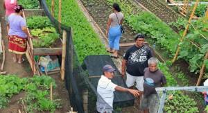 social-jardins-partagés-aux-champs